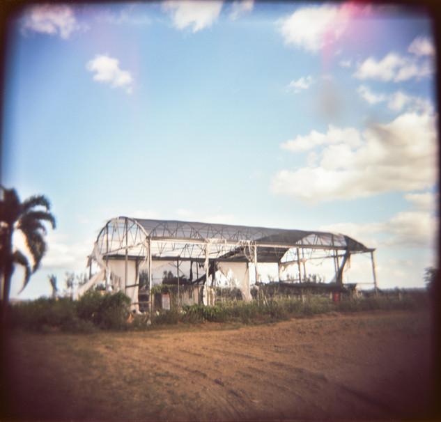 Farmland Series #15