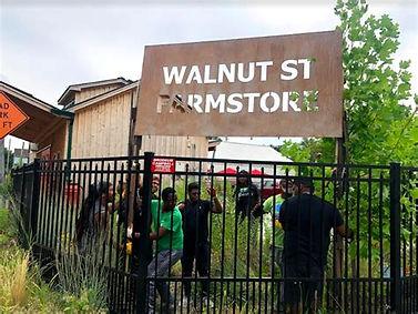 GTC Walnut store.jpg