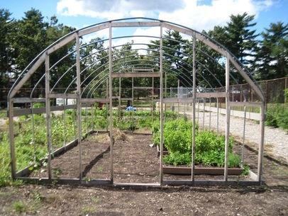 School Gardens 5.jpg