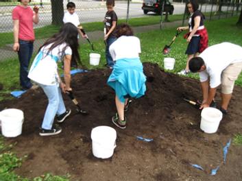 School gardens 4.png