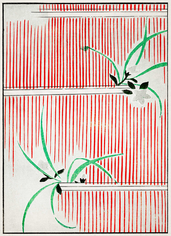 antique japanese illustration depicting a delicate orchid plant with green leaves and black and gray flowers, with a red and white striped background