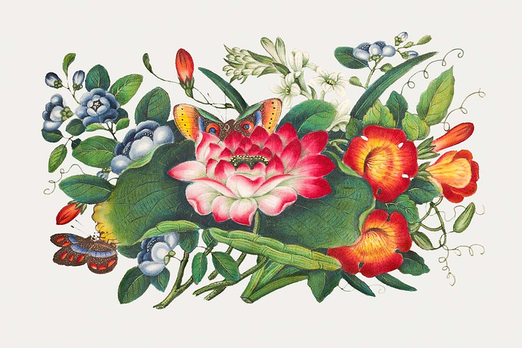 colorful antique illustration of various flowers that are pink, red, orange, yellow, blue and white. there are also a lot of leaves and some butterflies