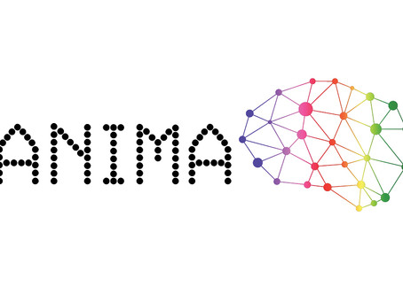 Interviews with ANIMA project stakeholders