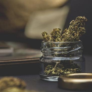 cannabis2_edited.jpg