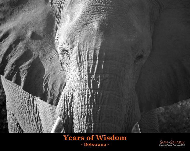 Years of wisdom 8x10 2018.jpg
