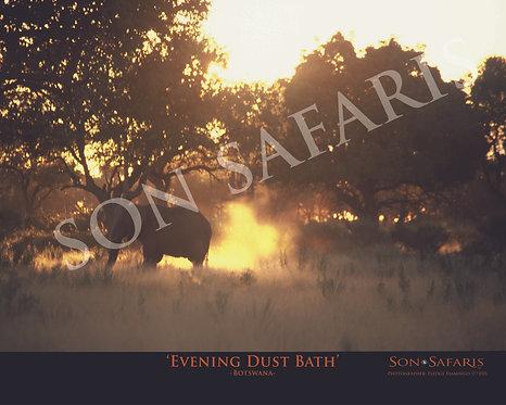 Evening Dust Bath