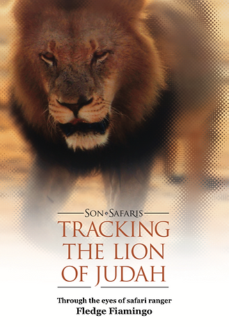 Tracking the Lion of Judah devotional