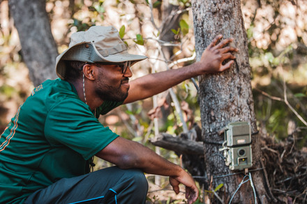 David putting up the reserve's camera traps to monitor its wildlife