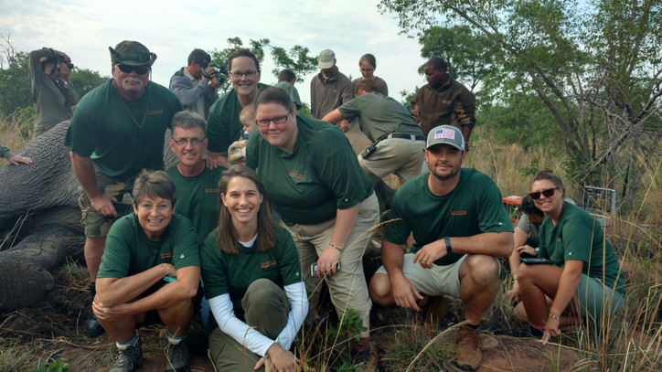Our team at the site while an elephant is being collared with a GPS radio collar