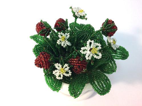 AP0422  Erdbeere