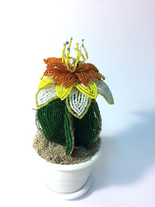 AP043  Kaktus aus 5 Teilen