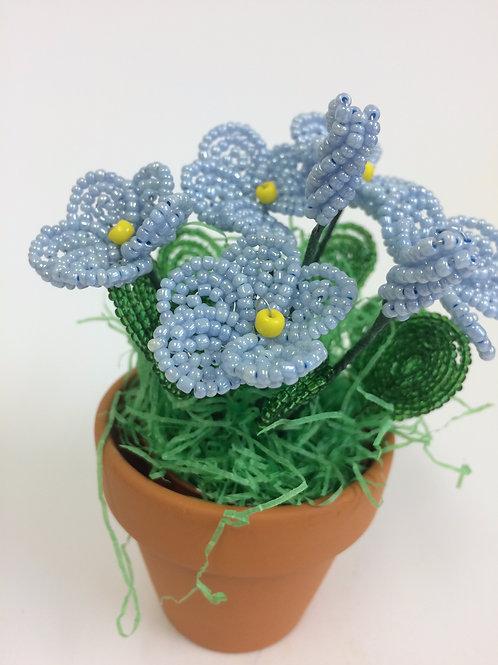 AP0455 Frühlingsgruß hellblau