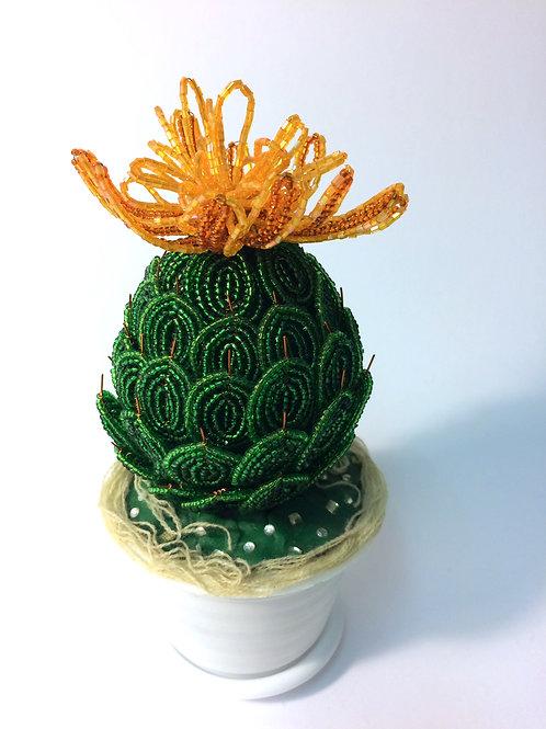 AP045  Kaktus mit oranger Blume