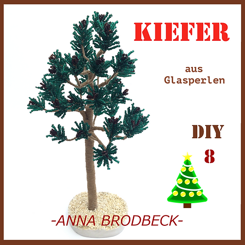 DVD-8 KIEFER