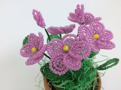 AP0455 Frühlingsgruß rosa