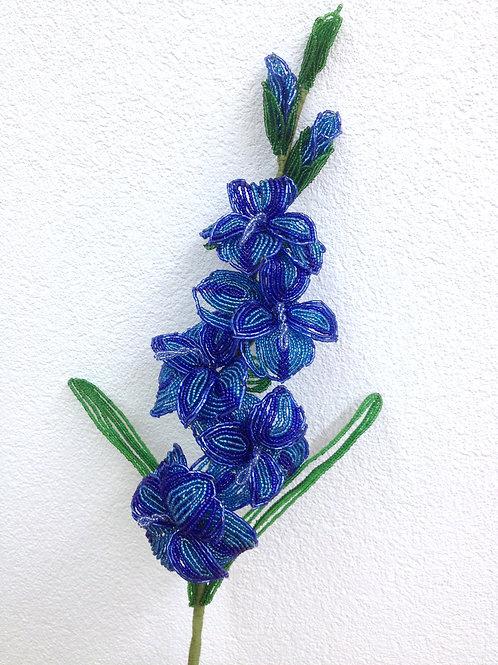 AP0441  Blaue Gladiolen