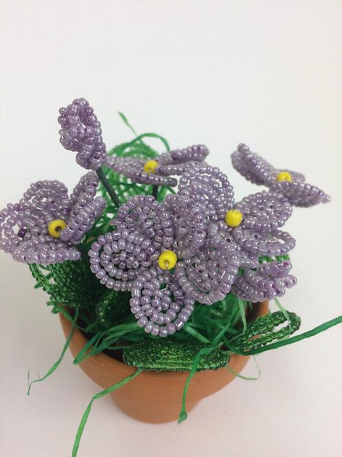 AP0455 Frühlingsgruß violett