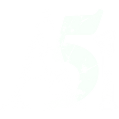 Logo a 51 solo bianco.png