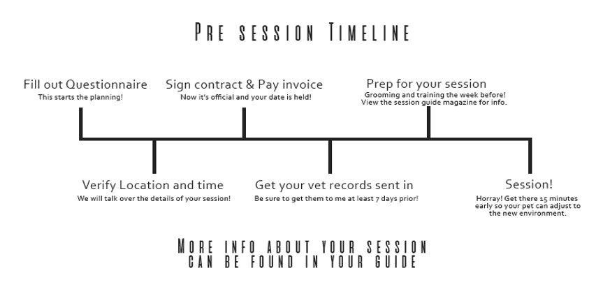 Photography PRE photo session timeline.j