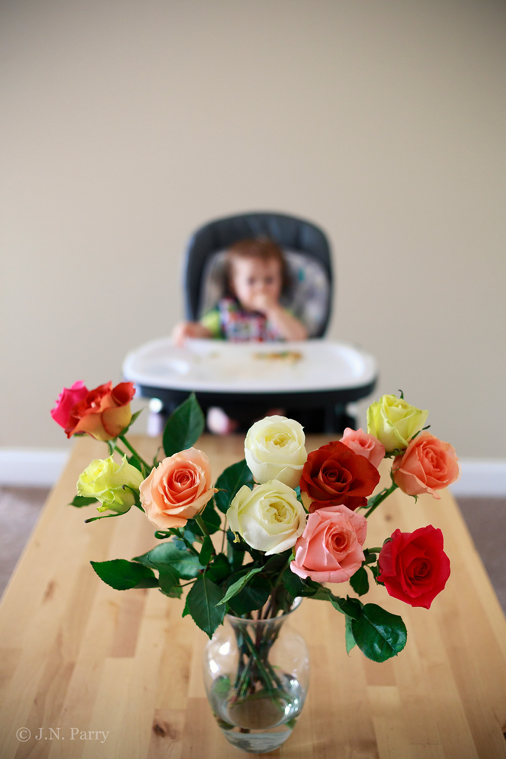 Roses & baby