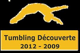 Tumbling-découverte.png