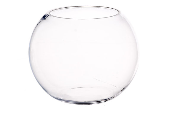 Glass Fish Bowl Medium