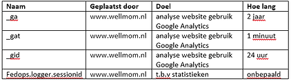 wellmom analytische cookies.png