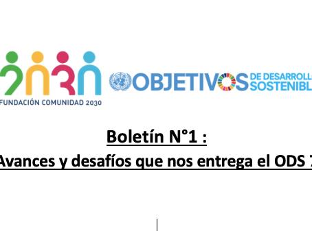 Boletín N°1 : Avances y desafíos que nos entrega el ODS 7