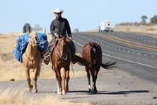 New Mexico highway3.jpg