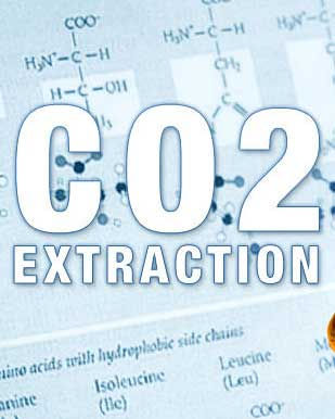 Repeater_3_Photos_CO2_Extract_309x386.jp