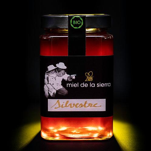 Miel Silvestre - 1 Kilo