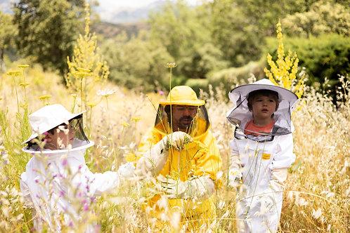 Apadrina una colmena +visita colmenar + 5 Kilos de miel