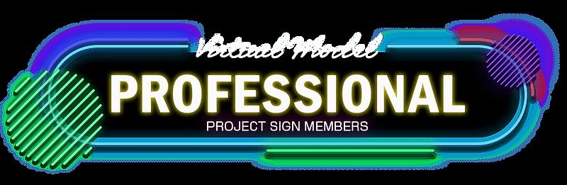 Virtual Model PROFESSIONAL