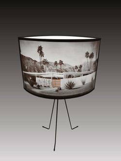 Palm Spring , Mid Century lamp