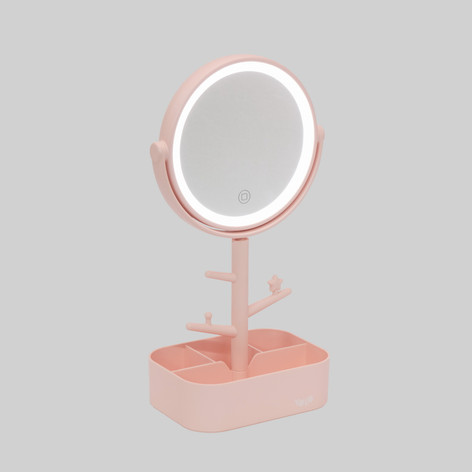 Jewlery holder and lighted mirror
