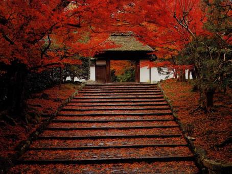 10月25日 Under the Autumn moon 満月ライブ
