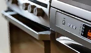 Cooker Dials
