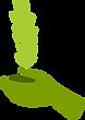 La main verte avec une petite plante