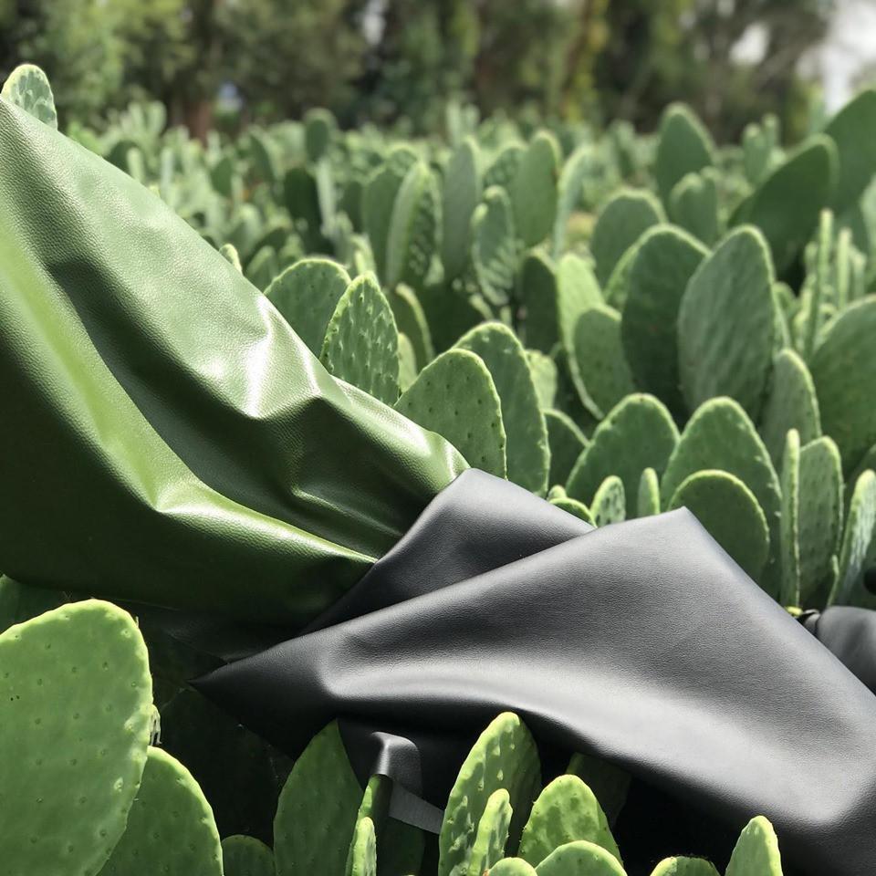 végan, cuir végétal, Mexique