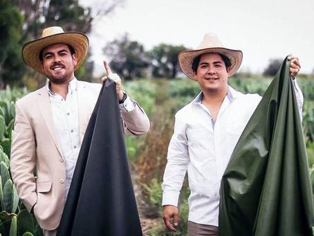 Deux mexicains créent le cuir végétal à partir de cactus !