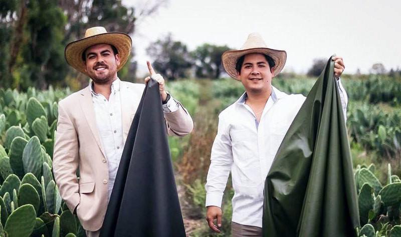 Mexique, cuir végétal, cactus