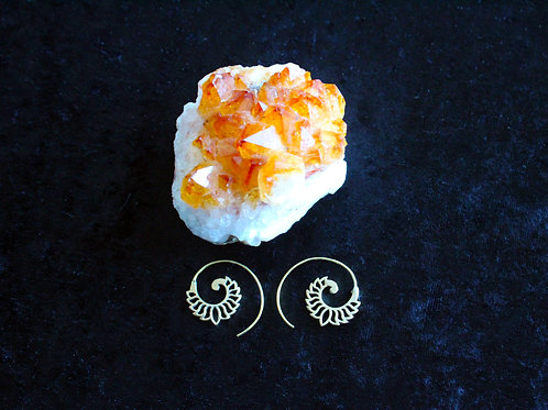 Small Lotus spirals