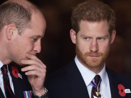 Prince William & Prince Harry - Statement on Private Investigation