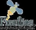F.I.R.E._logostack_centeredPNG.png