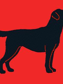Labrador Embroidery
