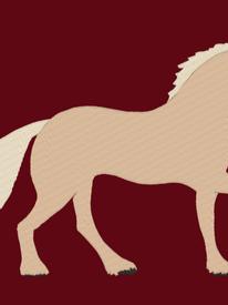Palamino Horse Embroidery