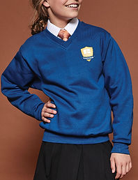 School v-neck sweatshirt