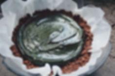Gâteau à la spiruline