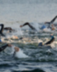 swim_race_pic_2017.jpeg