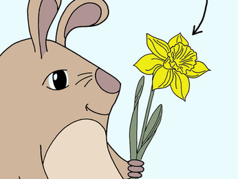 Fritzi und Freddi und die Blumen im Frühling